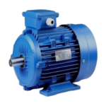 electric / induction motor
